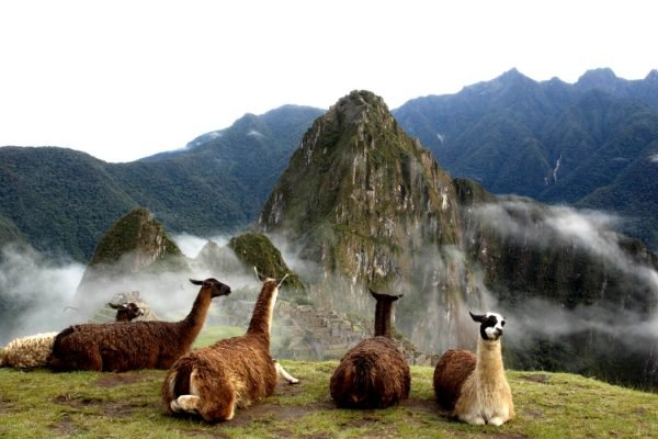 CUSCO, SACRED VALLEY & MACHU PICCHU: 4D/3N